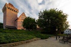 Le château royal à Poznan images libres de droits