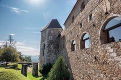 Le château sur Ljubljana en Slovénie photographie stock libre de droits