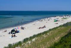 Le chêne bluffe la plage Image stock