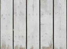 Le chêne peint par blanc grunge d'épluchage embarque le fond photo stock