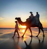 Le chameau voyage sur la plage de câble, Broome, Australie occidentale Photographie stock libre de droits