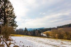 Le champ d'hiver s'est préparé au ressort et à l'élevage des usines Terre d'agriculture Montagnes à l'arrière-plan Photographie stock