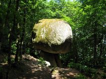 Le Champignon. View of le champignon, a huge granite rock looks like a mushroom weighing around 200 toons. It is into the ancient forest at Huelgoat (Brittany royalty free stock photos