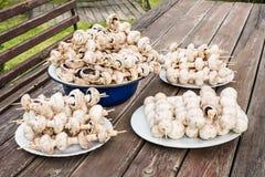 Le champignon embroche prêt pour le gril Image stock