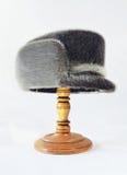 Chapeau d'hiver Photographie stock libre de droits