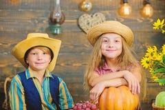 Le chapeau d'usage de garçon de fille d'enfants célèbrent le style rustique de festival de récolte Célébrez le festival de récolt photo libre de droits