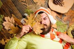 Le chapeau et l'écharpe barrés tricotés par usage de hippie tiennent des feuilles d'automne Appréciez la saison de chute et d'aut photos libres de droits