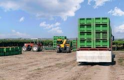 Le chargeur de chariot élévateur charge des récipients en plastique sur un camion images libres de droits