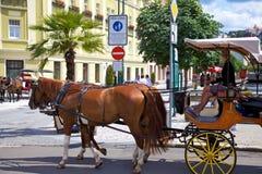 Le chariot de cheval sur une rue dans Karlovy varient Photo stock