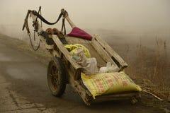 Le chariot de l'agriculteur chinois du nord Photographie stock