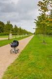 Le chariot des enfants noirs sur l'avenue dans le jardin de palais, Fredensborg, Danemark photos stock