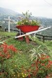 Le chariot réutilisé a fait le récipient pour planter des buissons Images libres de droits