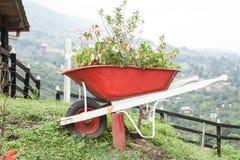 Le chariot réutilisé a fait le récipient pour planter des buissons Photo stock