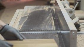 Le charpentier masculin à l'aide de l'avion dans le woodshop de travail du bois, travailleur rectifie les morceaux en bois pour d banque de vidéos
