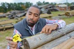 Le charpentier utilise l'outil de mesure pour choisir les rondins droits Images stock