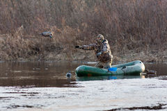 Le chasseur jette les canards bourrés d'un canot en caoutchouc Image stock