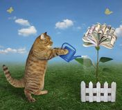 Le chat élève un arbre d'argent photos stock