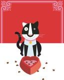 Le chat aime la nourriture Image libre de droits