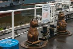 Le chat et le chien Amis de bateau des marins photographie stock