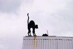 Chat et souris sur le dessus de toit dans Ushuaia Images stock
