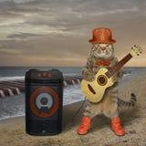 Le chat joue la guitare près du haut-parleur 3 image stock