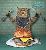 Le chat mange un hamburger de poissons photographie stock libre de droits