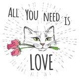 Le chat mignon avec des fleurs et toutes que vous avez besoin est amour illustration de vecteur