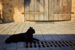 Le chat noir se repose en porte de Front Of An Old Wooden photo libre de droits