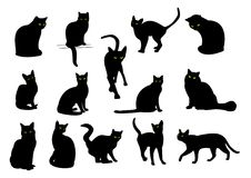 Le chat noir silhouette le groupe Images stock