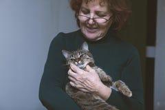 Le chat rayé se repose sur les mains photo stock