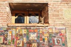 Le chat sur la fenêtre de la tour d'horloge dans la ville de Tbilisi, la Géorgie Photographie stock