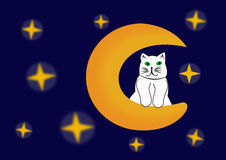 Le chat sur la lune Photos stock