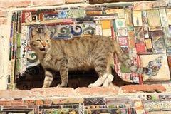 Le chat sur la tour d'horloge dans la ville de Tbilisi, la Géorgie Photo libre de droits