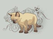Le chat sur le fond bizarre illustration libre de droits