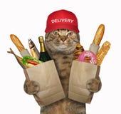 Le chat tient des sacs d'épicerie images libres de droits
