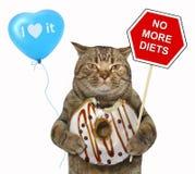 Le chat tient un signe et un beignet de chocolat photographie stock libre de droits