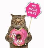 Le chat tient un signe et un beignet mordu photographie stock libre de droits