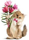 Le chaton a donné un bouquet des fleurs Image stock