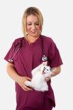 Le chaton n'aime pas le vétérinaire Photographie stock libre de droits
