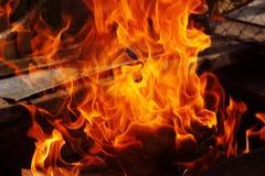 Le chaudronnier du feu sur des légumes de viande de friture d'os de nature font cuire image stock