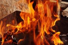 Le chaudronnier du feu sur des légumes de viande de friture d'os de nature font cuire photographie stock