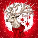 Le chef de cerfs communs d'illustration de vecteur avec des andouillers a décoré des étoiles de guirlande de Noël Photo libre de droits