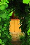 Le chemin à la maison par la voûte de vigne Image libre de droits