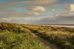 Le chemin côtier Photos libres de droits
