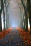 Le chemin? de l'amour - pieds formés avec des coeurs Image libre de droits