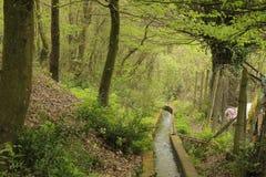 Le chemin de l'eau en bois image libre de droits