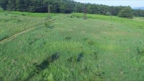 Le chemin de la terre menant à la forêt et aux lignes électriques banque de vidéos
