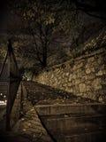 Le chemin de la vie pendant la nuit photo stock