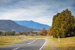 Le chemin de montagne Photographie stock