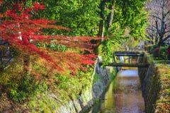 Le chemin de Philospher à Kyoto, Japon Images libres de droits